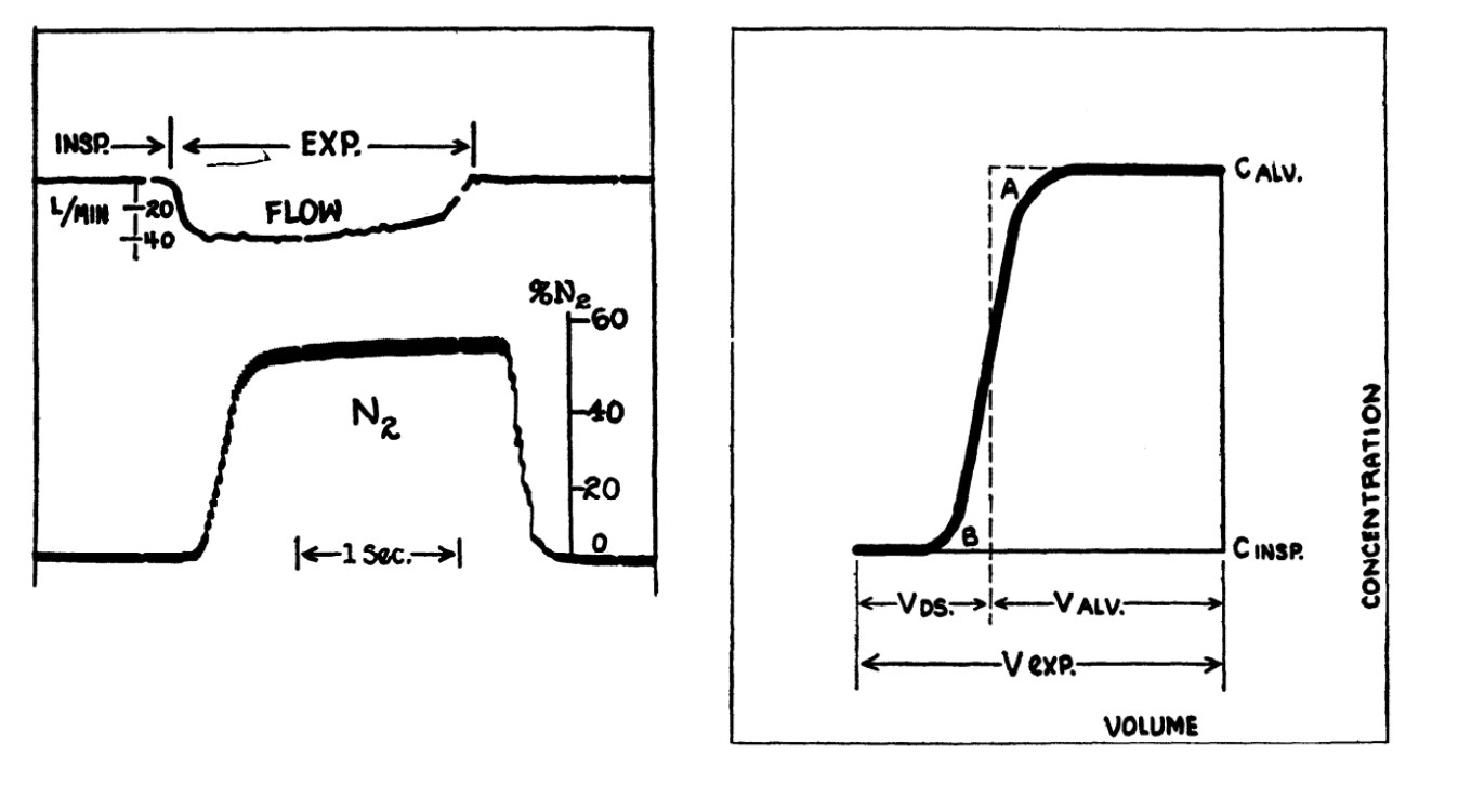 Fowler's single breath nitrogen washout method from the original paper