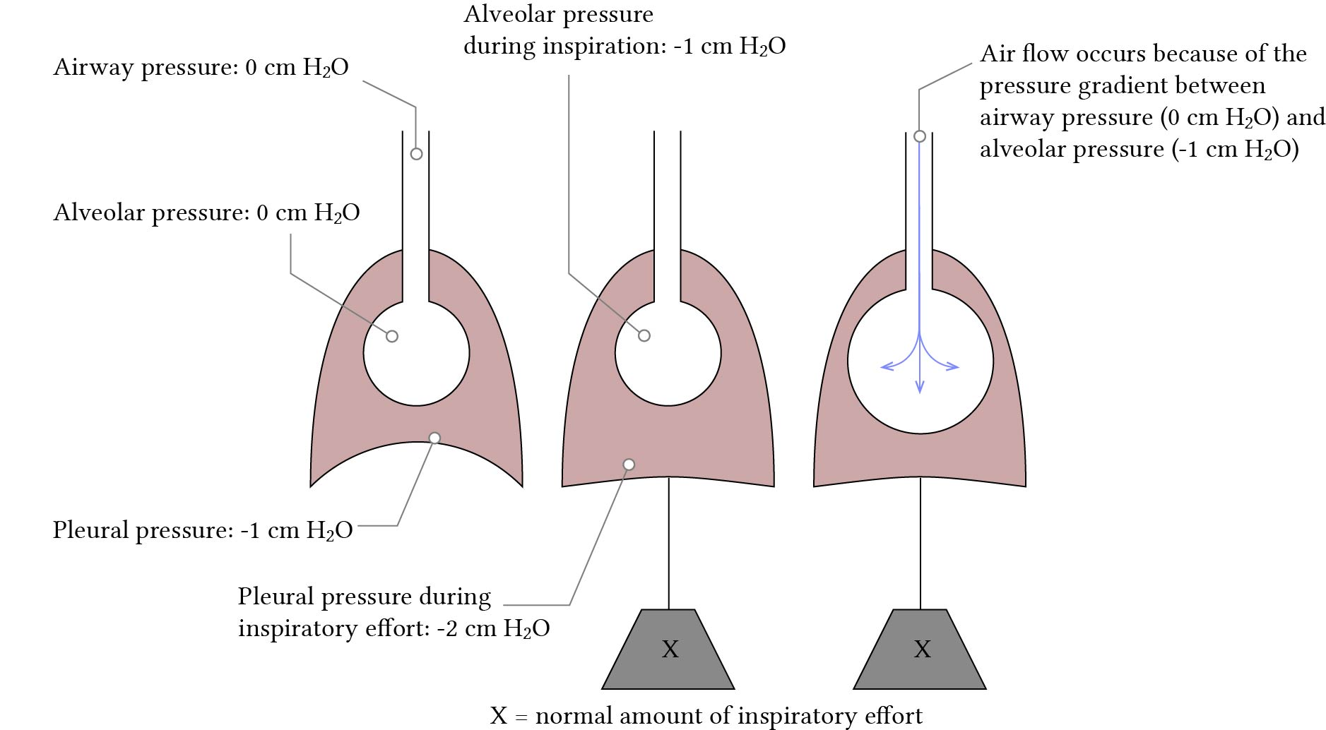 normal breathing effort pressure diagram