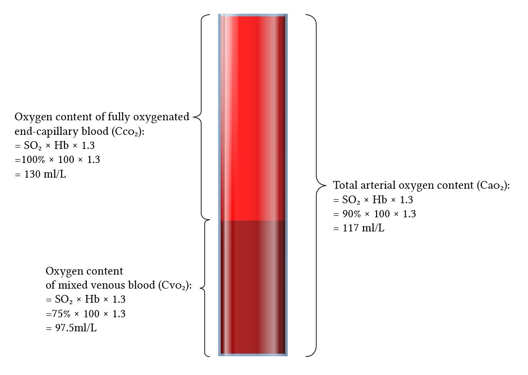 Shunt fraction expressed as a volume of arterial blood