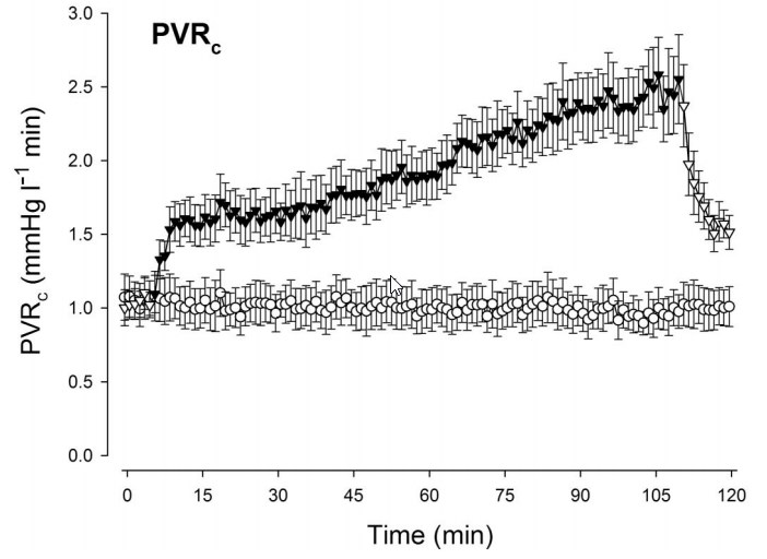 biphasic pattern of hypoxic pulmonary vasoconstriction from Talbot et al (2005)