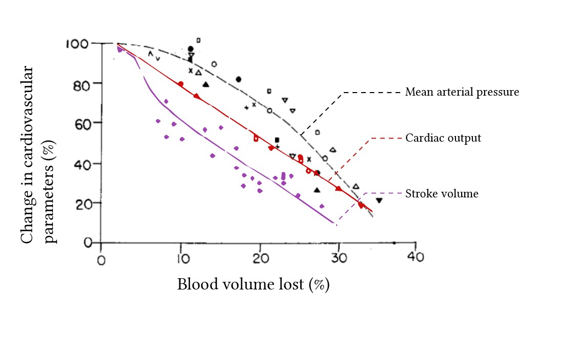 change in cardiovascular parameters with haemorrhage in the absence of cardiac reflexes