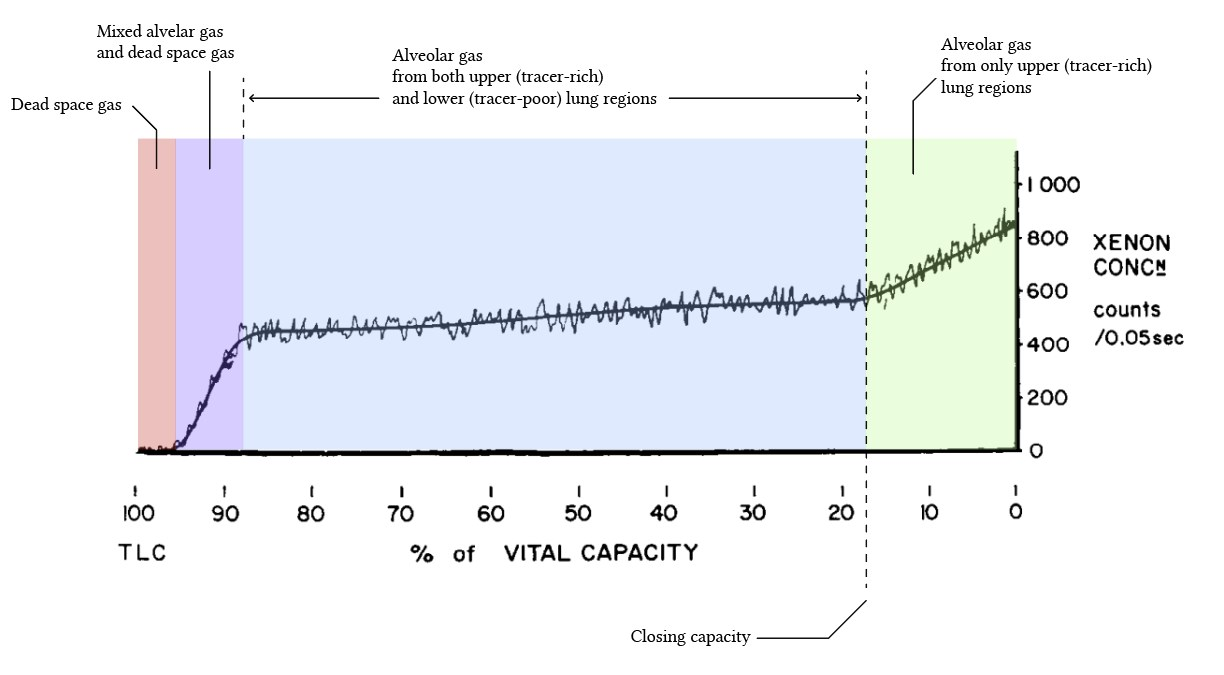 measurement of closing capacity by xenon bolus from Dollfuss et al (1967)