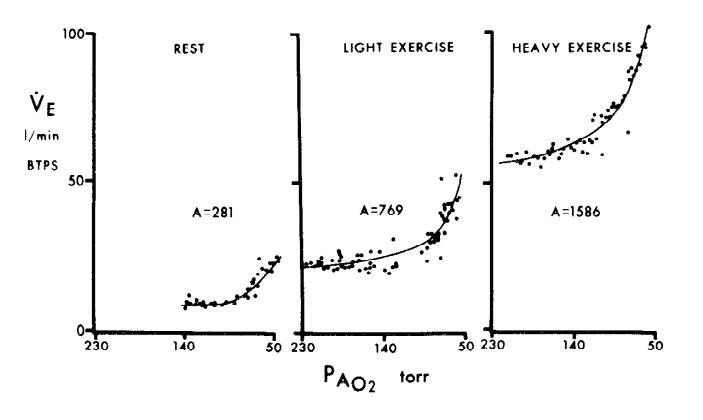 ventilatory response to hypoxia during exercise from Martin et al (1978)