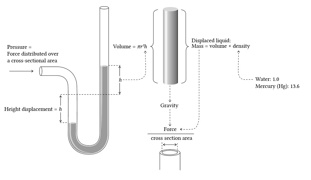 A diagram (poorly) explaining the relationship of pressure and fluid column height