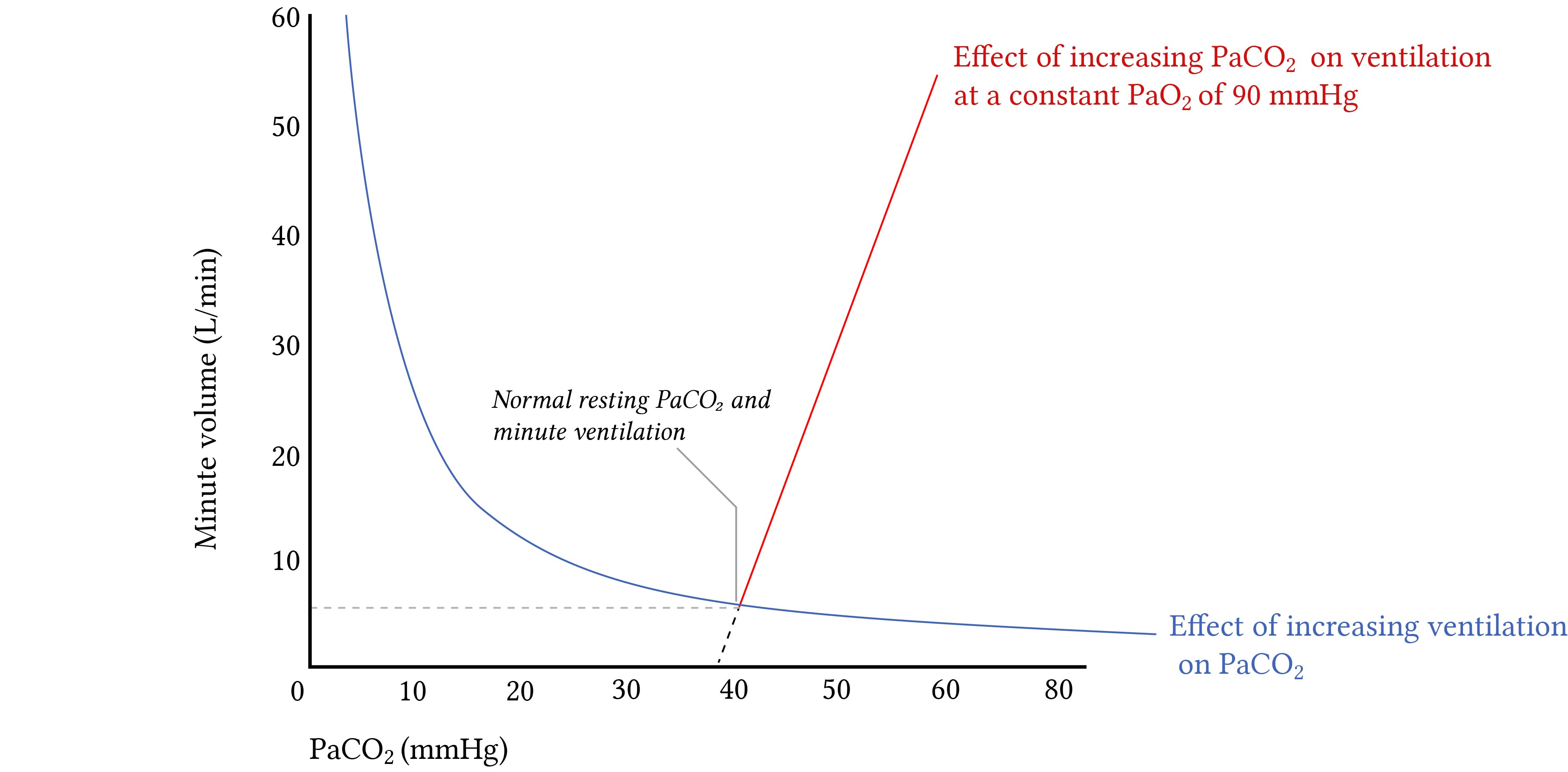 Changes in CO2 in response to changing ventilation.jpg