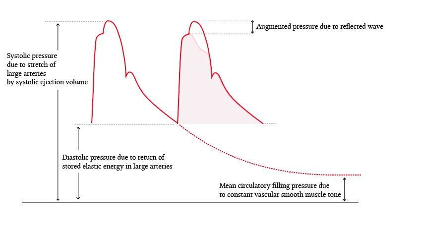 Contributions from elastic energy to arterial pressure