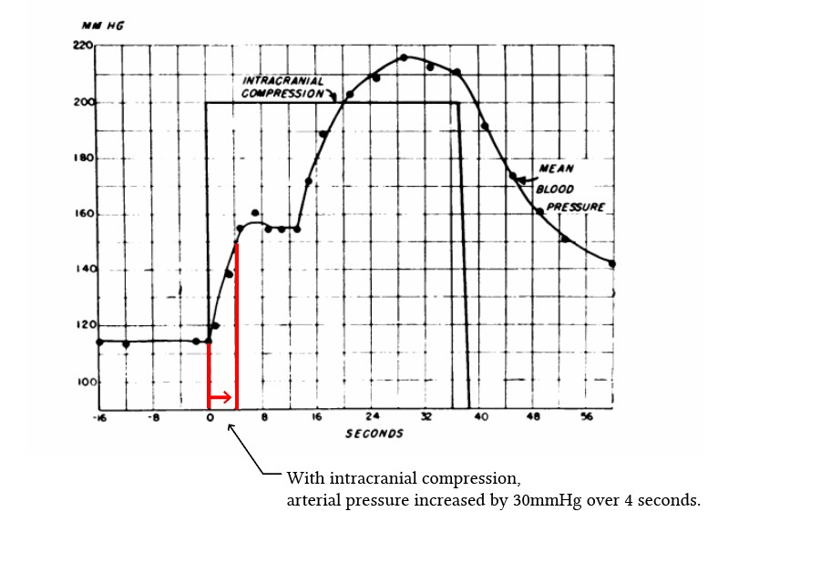 Cushing reflex timing of response from Rodbard & Stone (1955)
