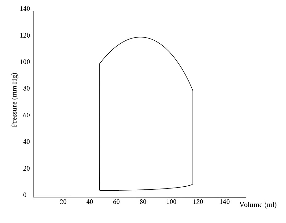 Pressure volume loop of the left ventricle, scaled and labelled but otherwise blank