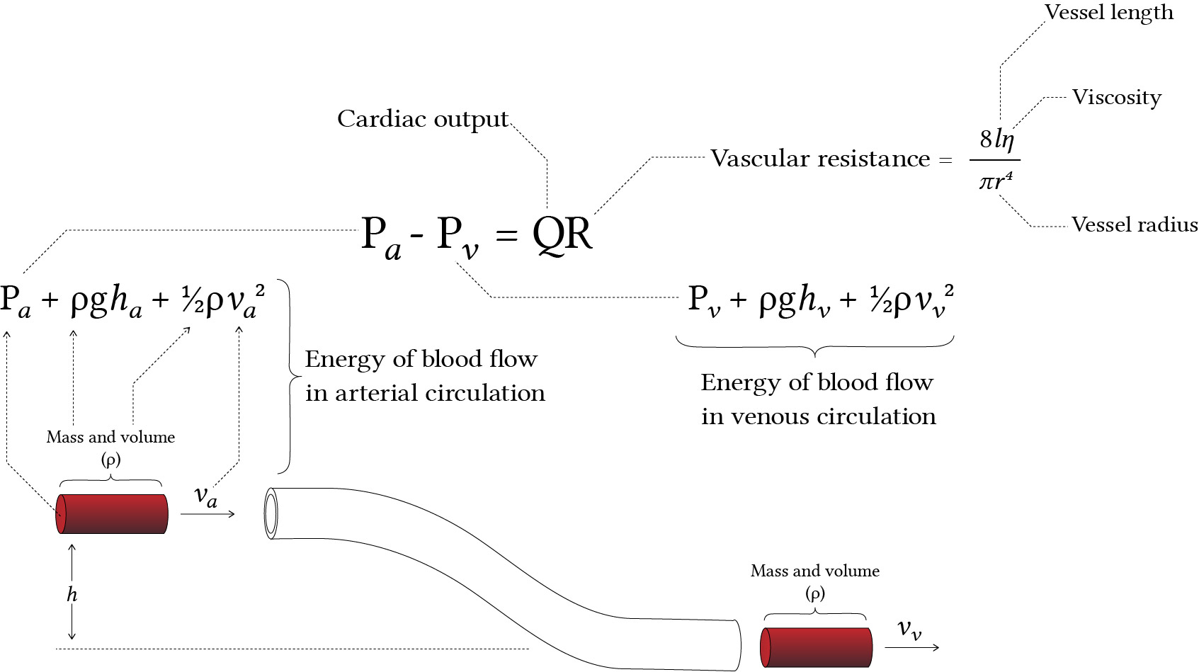 big crazy diagram, trying to relate energetics of blood flow to the relationship of flow pressure and resistance