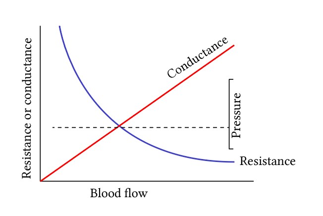 crude relationship between vascular resistance and conductance at constant pressure