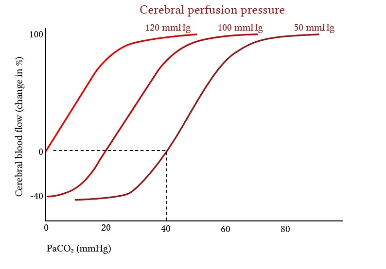 effect of CO2 on cerebral blood flow at different perfusion pressures