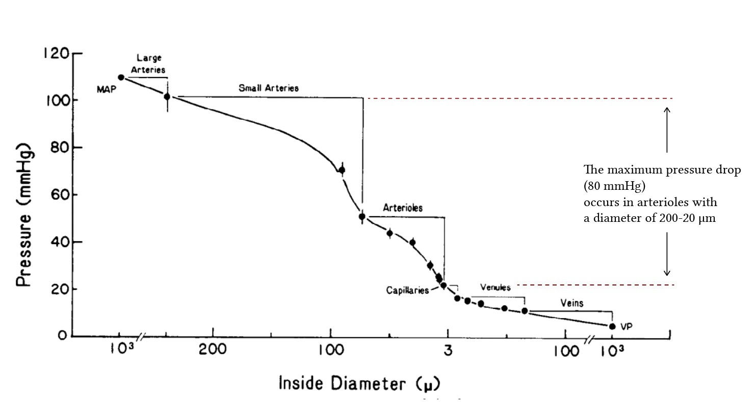 pressure drop along the circulatory system, from Davis et al (1986)