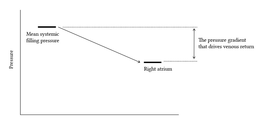 pressure gradient between mean systemic filling pressure and right atrial pressure