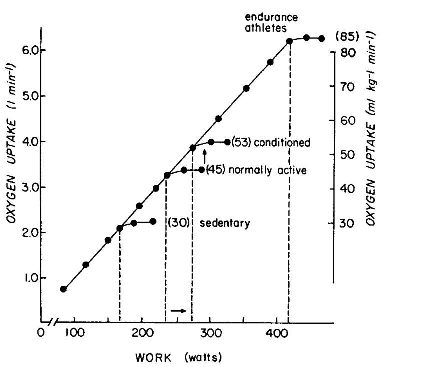relationship betweene exercise intensity and oxygen uptake