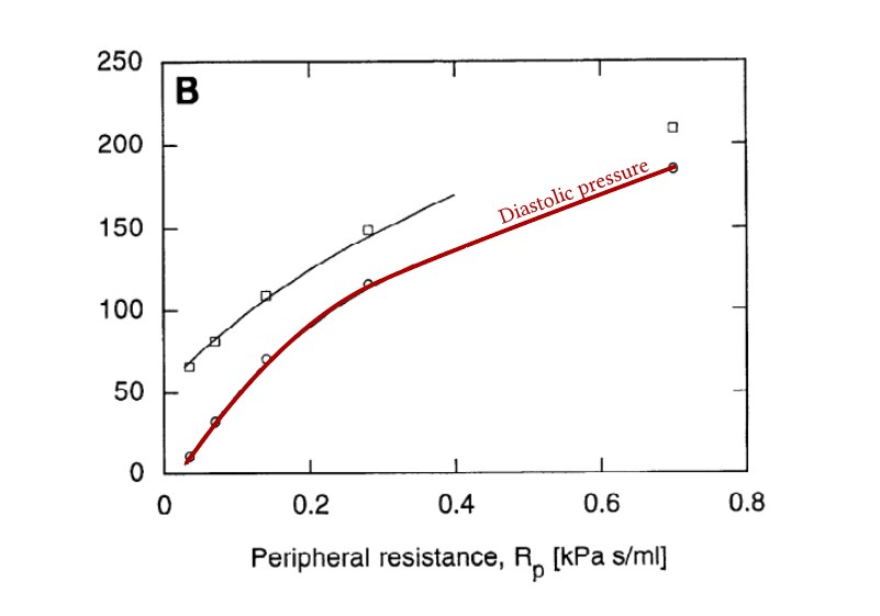 relationship between peripheral vascular resistance and diastolic blood pressure
