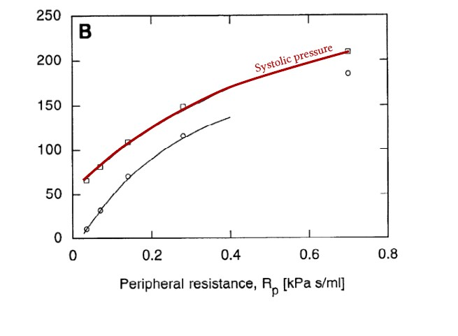 relationship between peripheral vascular resistance and systolic blood pressure