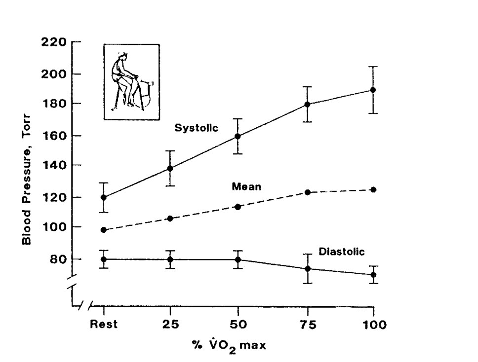 relationship of exercise intensity and blood pressure parameters