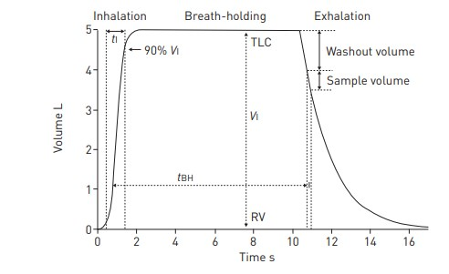 single breath DLCO measurement ytechnique from the ERS-ATS statement