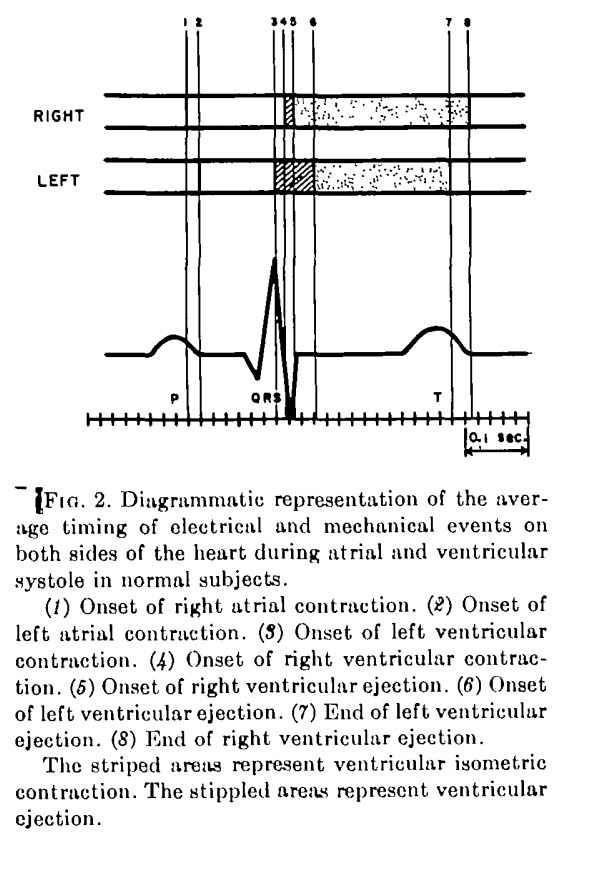 timing of electrical events in the cardia cycle, by Braunwald et al (1956)